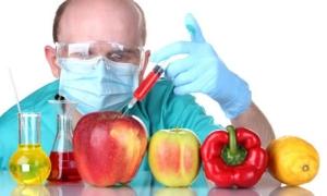 генно модифицированные продукты питания