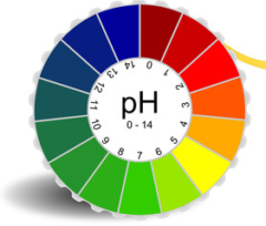 pH воды. Водородный показатель